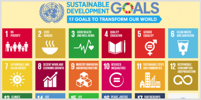 Seventeen goals to transform our world, the Sustainable Development Goals, aka the SDGs, encompass 169 targets and 230 indicators, and come with a price tag of $3-5 trillion per year.