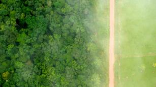 A bird's eye view of the stark contrast between the forest and agricultural landscapes near Rio Branco, Acre, Brazil. Photo by Kate Evans for Center for International Forestry Research (CIFOR)